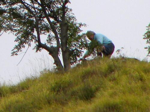 pinoscultore1